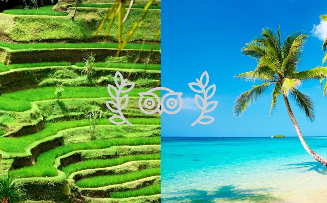 Tripadvisor Ranks Bali And Phuket As 2019 Top 2 Travel Destinations In Asia